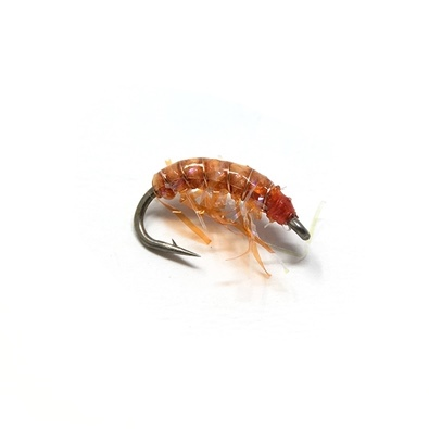 Gammarus - Orange UV