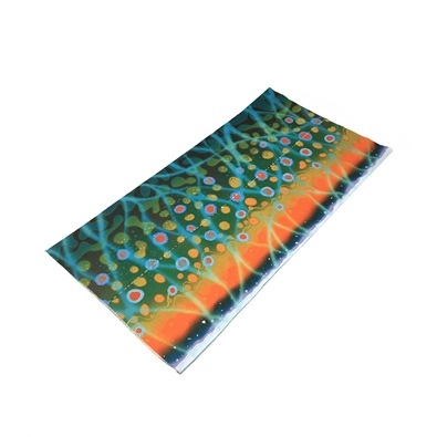 Neck Gaiter - Brook Trout Original Design
